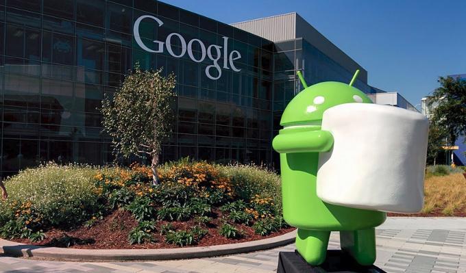 Google's New Lineup