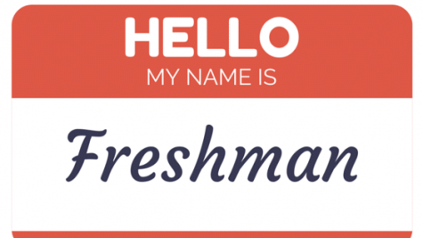 Year in Review: The Freshman Experience